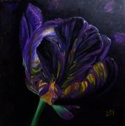 orchidee noire fleur, galerie-creation